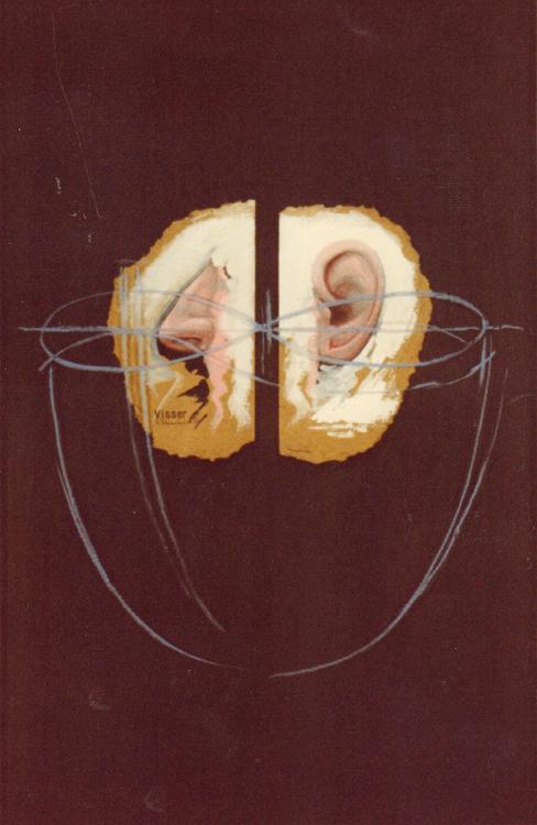 Visser 1983 750pix H 40,5 x 61,5 Coll E Ackemann